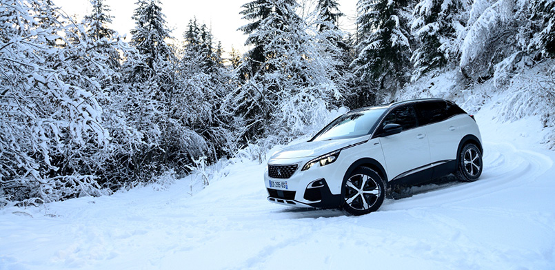 PEUGEOT WINTER-CHECK
